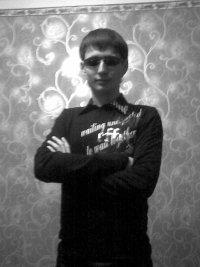 a_6510528d.jpg